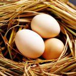 Cách phân biệt trứng gà cũ mới