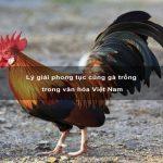 Lý giải phong tục cúng gà trống trong văn hóa Việt Nam
